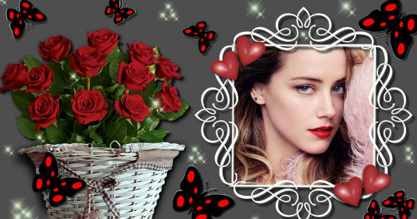 Create  your best  photo with roses and butterflies. Click here!